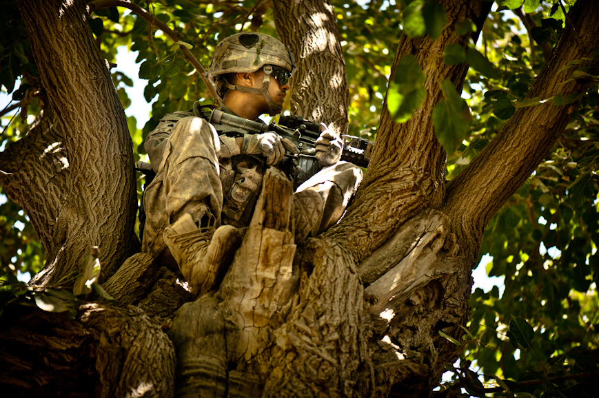 Sergeant Rolando Zavala hides in a tree overlooking a pathway leading out of Nur Muhammad Kalache.